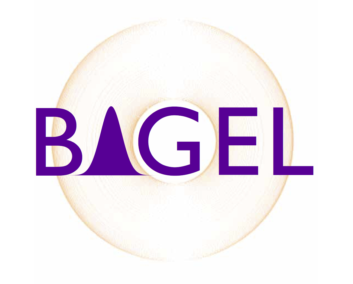 _images/bagel-final.png